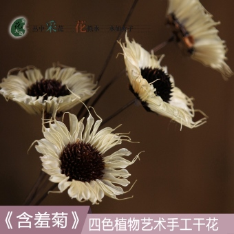 Dried real flower simulation dried flowers small Daisy dried flowers bouquet small fresh natural living room bedroom in the Home Furnishings