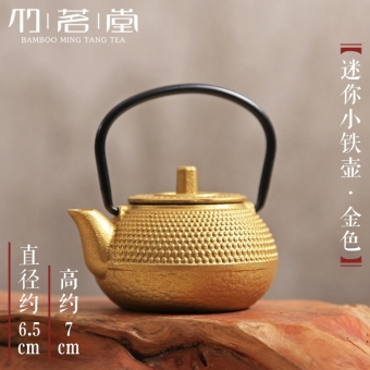 Mini small teapot cast iron tea pet iron pot