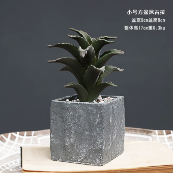 Succulent cactus model plant potted decoration cement pots