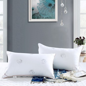 Super soft can be washed pillow feather velvet pillow