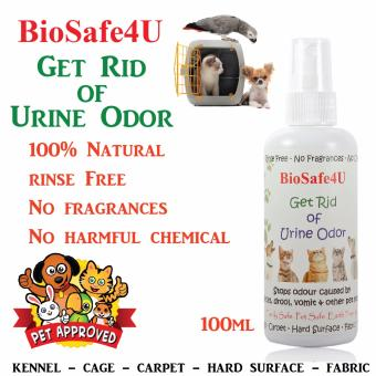 Get Rid Of Urine Odor