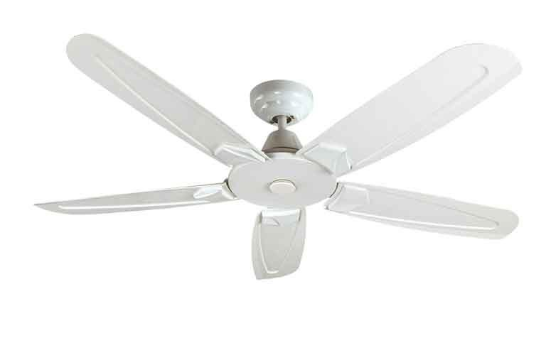 Buy Fanco Ffm6000 48 Ceiling Fan White With Regulator Online Singapore