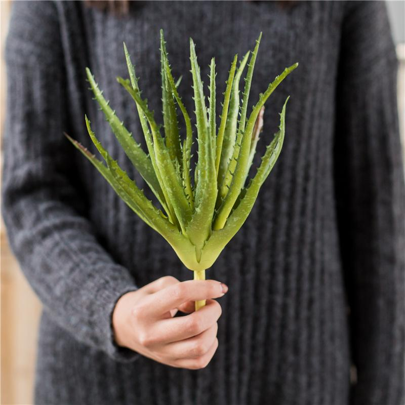 ... Benih Selada hijau Webs Wonderful F1 Mr Fothergills Bibit sayur sayuran hidroponik. Source · Zuoanmaitian Tanaman Hijau Miniatur Bunga Hiasan Perhiasan ...