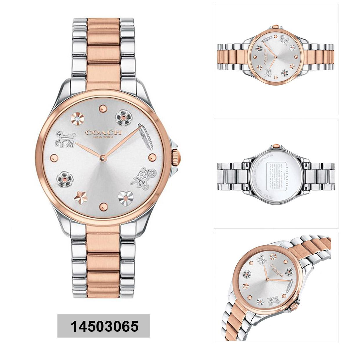 Coach Coach Astor Sunray Charm Multicolored Stainless-Steel Case Two-Tone-Stainless-Steel Bracelet Ladies 14503065 Malaysia