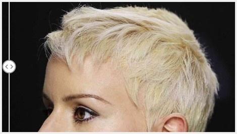Specifications of Hair Building Fibers Hair Loss Solutions Concealer 27.5g Dark Brown - intl