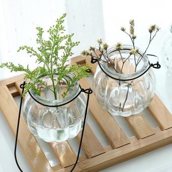 gelas transparan Vas bunga labu kecil Botol gantung minimalis Pembiakan Dengan Air pot .