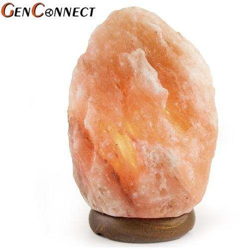 Salt Lamp Himalayan Salt Lamp 6 7Kg Best Price