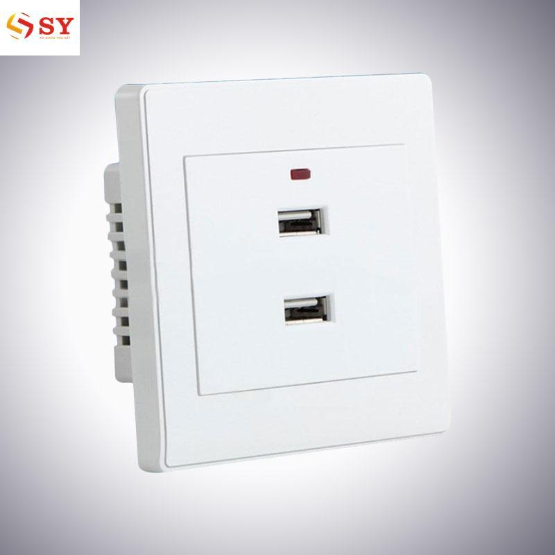 So Young 2.1A 2 Ports USB Wall Mounted Socket Intelligent Charger Outlet Plate Panel Tool