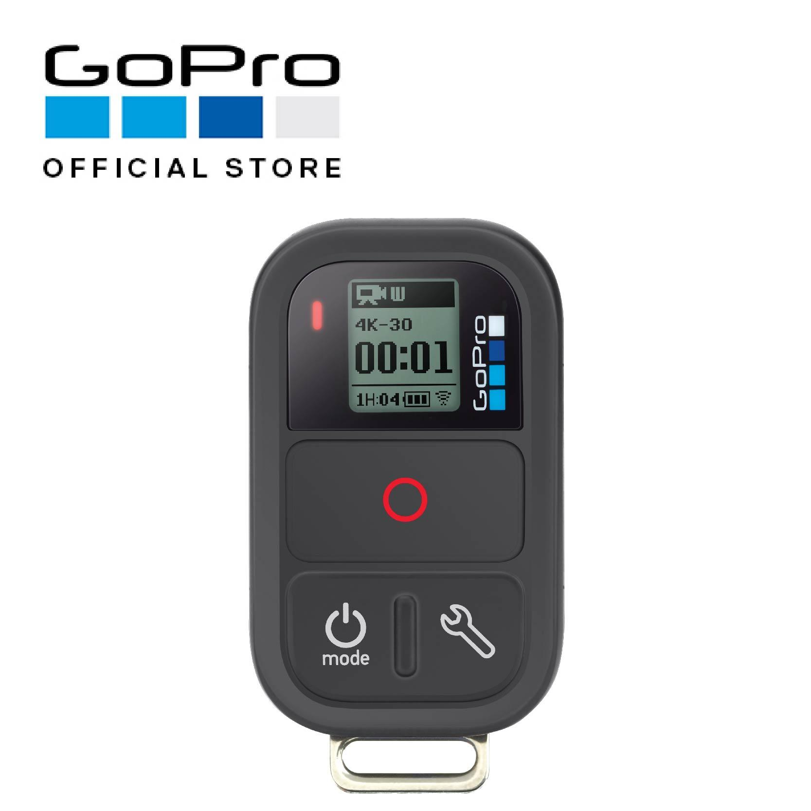 Gopro Smart Remote Lowest Price