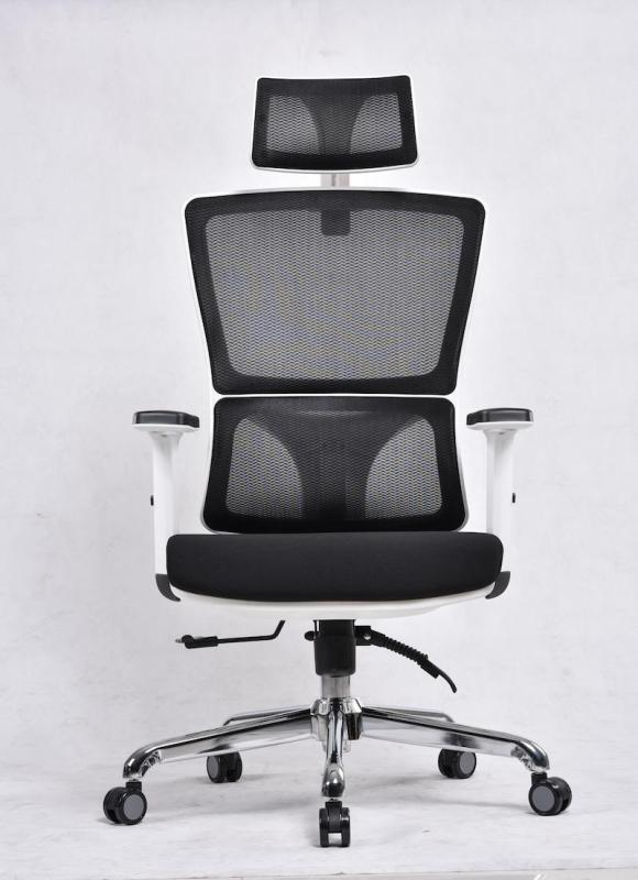 UMD Ergonomic High-Back Reclinable Mesh Office Chair with Adjustable Armrest & Headrest (Free Installation) Singapore