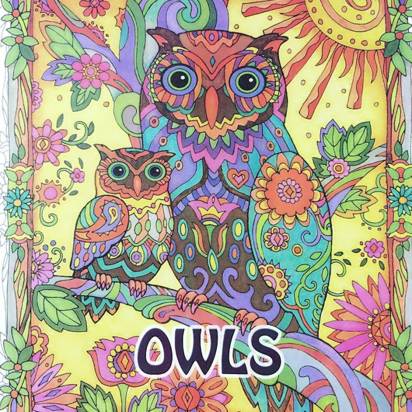 Secret Garden OWLS 2016 New An Inky Treasure Hunt And Coloring Book For Children Adult Relieve