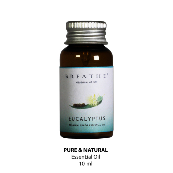 Harga Eucalyptus - Pure & Natural essential oil