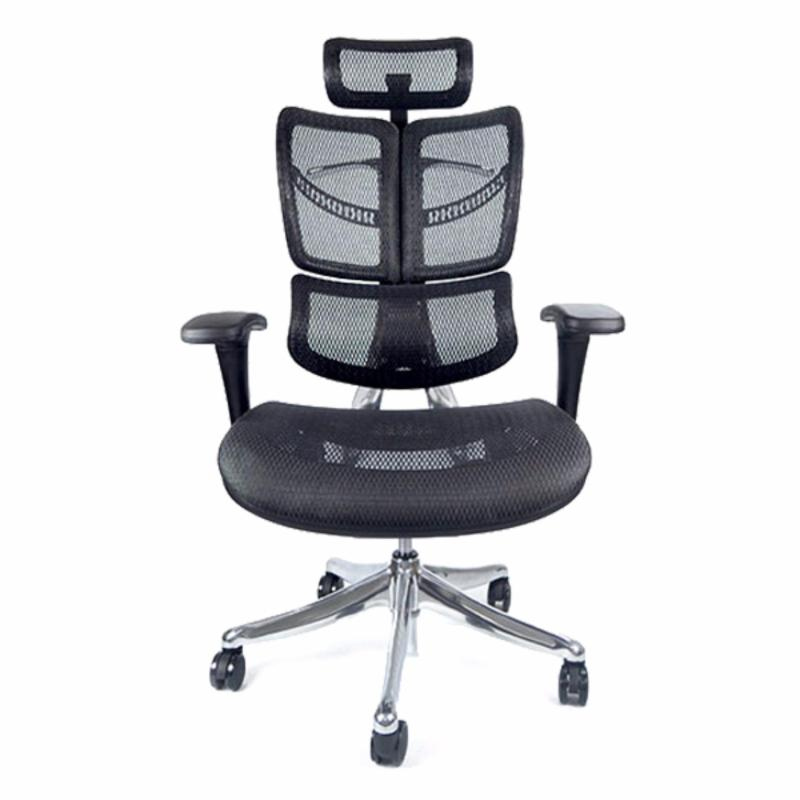 FLY Luxury Ergonomic Office Chair (Black)(Installation Option Available) Singapore