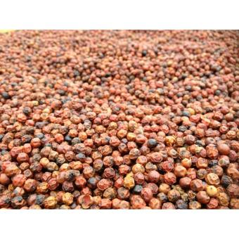 Harga Krystal Pepper : The Best N Rarest Peppercorns in the World : Organic Red(Red)