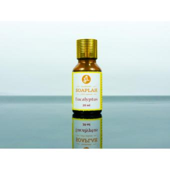 Harga Pure Eucalyptus Essential Oil 20ml
