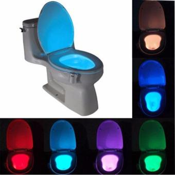 Harga Light Bowl Motion Activated Toilet Led Night Light