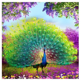 Harga DIY Diamond Embroidery Peacock Painting for Home Decoration - intl