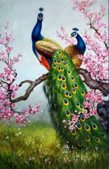 Harga Art Print Animals Peacock oil painting Picture Printed on canvas 16X24 Inch P043 (EXPORT) - Intl