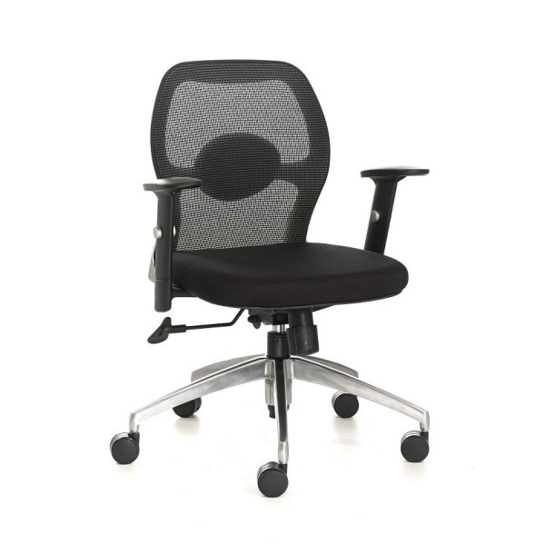 Miro Mesh Office Chair Low Back Singapore