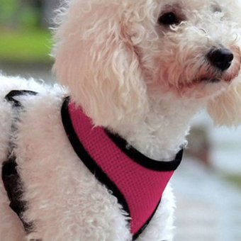 Soft Mesh Dog Harness Pet Puppy Cat Clothing Vest Pink M