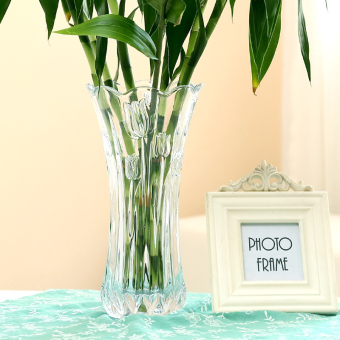 Transparent Glass living room flower arrangement vase