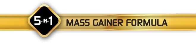 5-in-1 Mass Gainer Formula