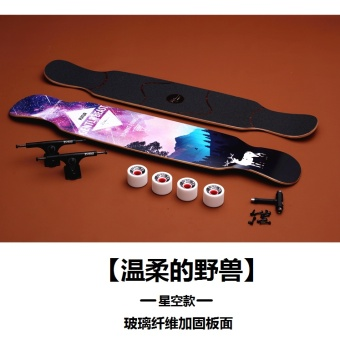 Adult Professional four road skateboard dance Board