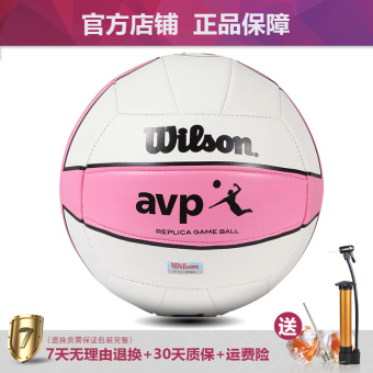 Wilson training in the exam students dedicated ball volleyball
