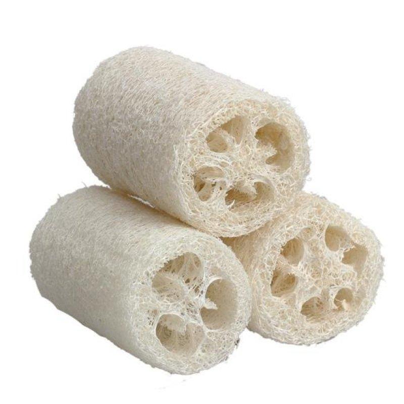 Buy 3x Natural Loofah Luffa Loofa Bath Body Shower Sponge Scrubber Small Size - intl Singapore