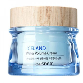 Harga The Saem Iceland Water Volume Hydrating Cream(For Combination Skin) - intl