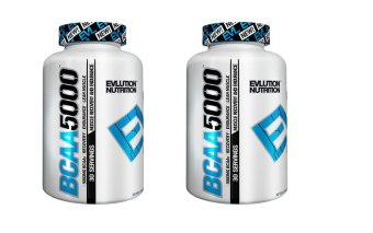 Harga Evlution Nutrition BCAA 5000 480 Capsules