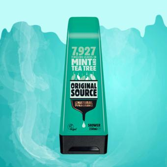 Harga Original Source Mint & Tea Tree