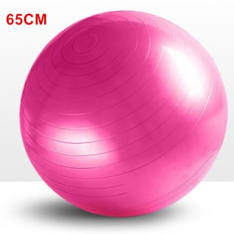 Harga Yoga Exercise Ball 65cm Yoga Balls Pilates Balance Sport Fitball Proof Balls Anti-slip for Fitness Training - intl