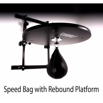 Speed Bag with Rebound Platform - 2