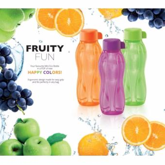 Harga Tupperware Eco Water Bottle 500ml (Singapore Seller + 100% Authentic)