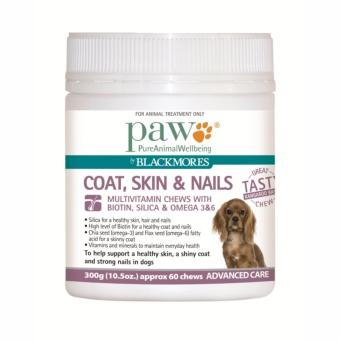 Harga PAW Coat, Skin & Nails Multivitamin Chews