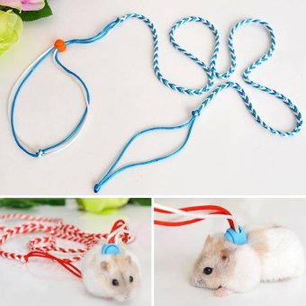 Harga New Adjustable Leash Collar Pets Rope Hamster Traction Rope HighQuality