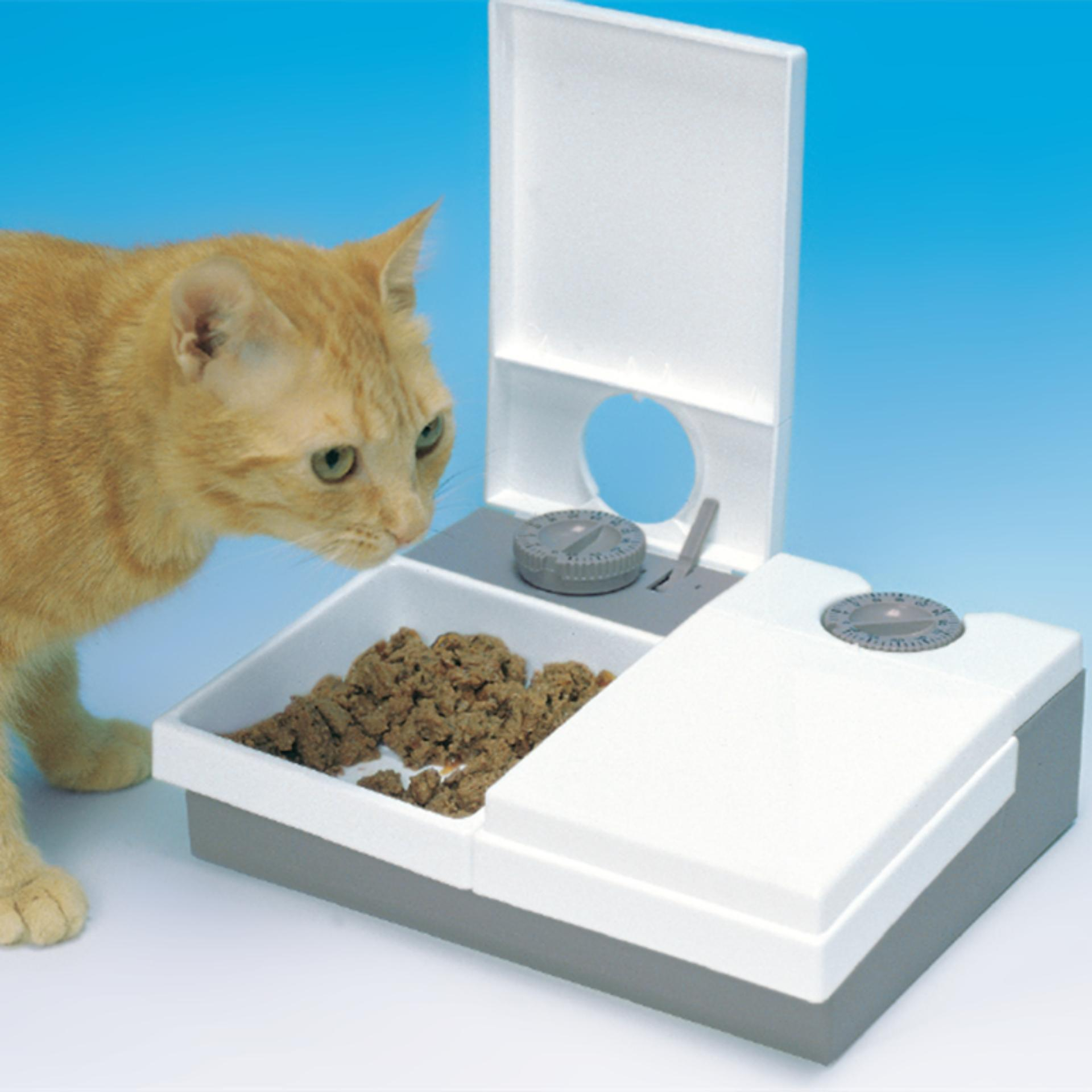 eatwell petsafe dog automatic meal timer or with cat watch electronic feeder